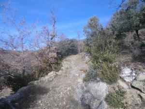 Camino 1