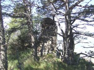 Restos muro norte