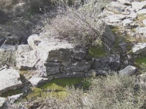 San Pedro de la Ribera muro S posible absidiola