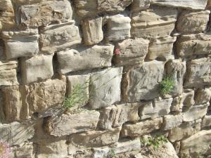 Tizones en el muro sur