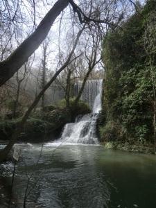 201. Monasterio de Piedra. Parque