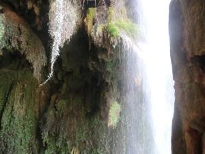 221. Monasterio de Piedra. Parque