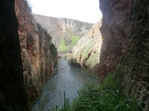 223. Monasterio de Piedra. Parque