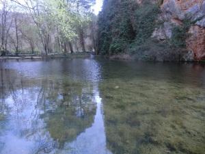 230. Monasterio de Piedra. Parque