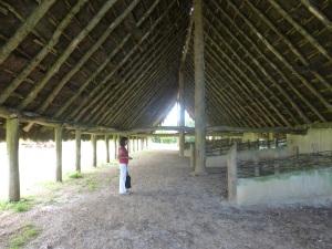 242. Museo de los Túmulos de Bougon