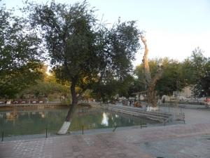 520. Bujara. Plaza Lyabi-Hauz