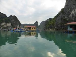 432. Bahía de Halong. Paseo en barca