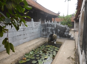 611. Pagoda de But Thap