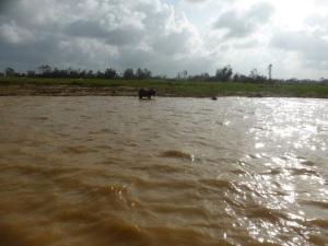 735. Hoi An. Excursión en barca por el río Thu Bon