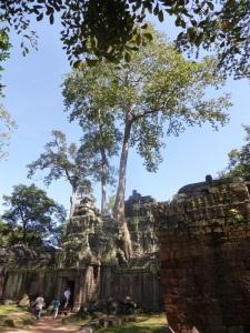 078. Angkor Thom. Ta Prohm