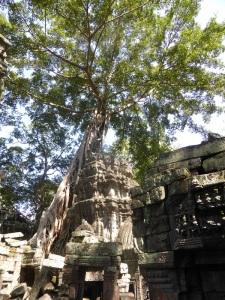 089. Angkor Thom. Ta Prohm