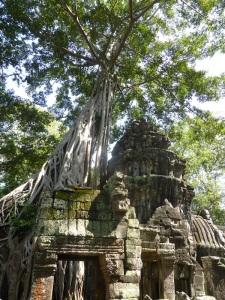 092. Angkor Thom. Ta Prohm