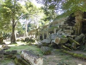 103. Angkor Thom. Ta Prohm
