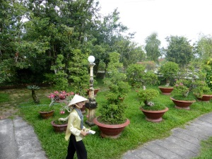 1104. Visita a casa colonial y huerto-jardín