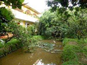 1114. Visita a casa colonial y huerto-jardín
