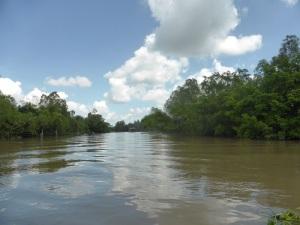 1138. Continuación de la excursión por el Mekong