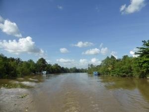 1155. Continuación de la excursión por el Mekong