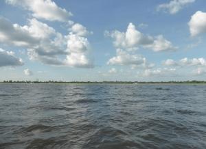 1161. Continuación de la excursión por el Mekong