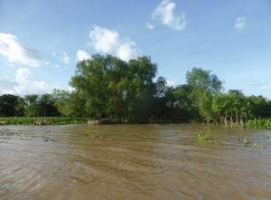 1166. Continuación de la excursión por el Mekong
