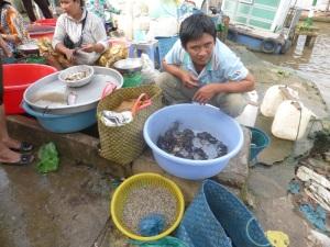 1243. Mercado de Cai Rang