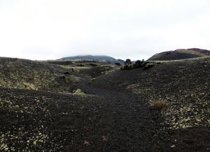 352. Volcán El Cuervo