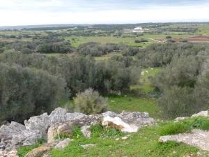 270. Poblado de Torrellafuda. Vistas desde el Talayot