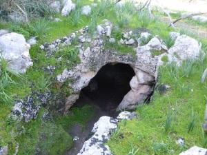 411. Torre de'n Galmés. Cueva del aceite