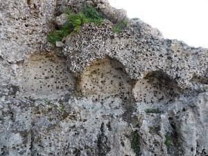 502. Cuevas de Cala Morell. capades de Moro
