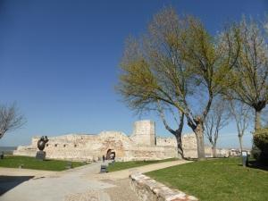 195. Zamora. Castillo