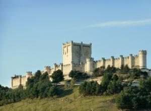 254. Peñafiel. Castillo