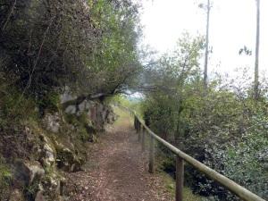 305. San Román de Candamos