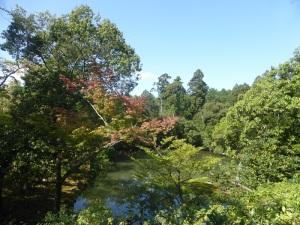 064. Kyoto. Templo de Kinkaku-ji