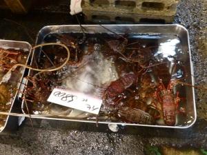 1013. Tokio. Mercado de pescado de Tsukiji