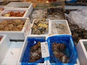 1023. Tokio. Mercado de pescado de Tsukiji