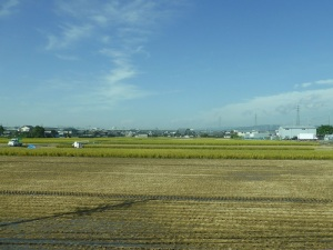 182. Carretera Kioto- Nara