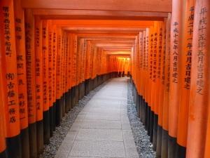 301. Kioto. Santuario Fushimi