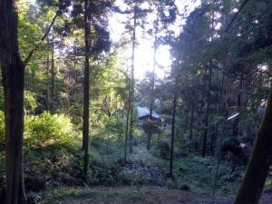 312. Kioto. Santuario Fushimi