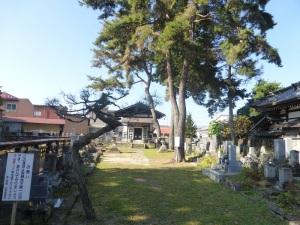 462. Takayama