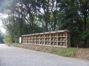 624. Tokio. Santuario Meiji
