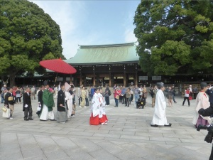 635. Tokio. Santuario Meiji. Boda sintoísta