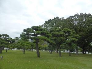 684. Tokio. Parque Kitanomaru