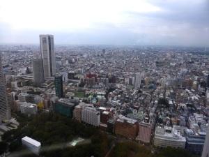 719. Tokio desde la torre del Gobierno Metropolitano