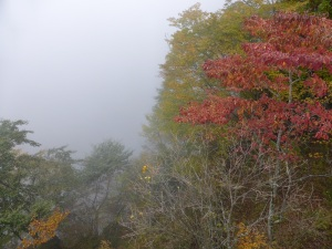 885. Lago Chuzenji. Cascadas Kegon