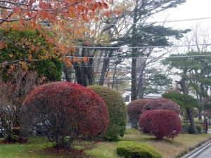 888. Lago Chuzenji
