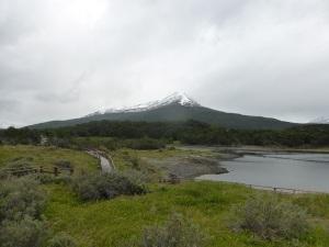 1111. Parque Nacional de Tierra de Fuego