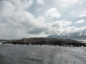 1148. Ushuaia. Navegación por el canal de Beagle. Isla de los Pájaros