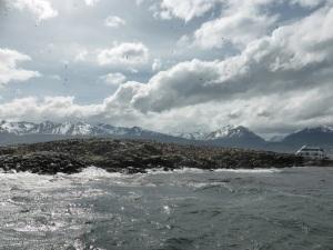 1149. Ushuaia. Navegación por el canal de Beagle. Isla de los Pájaros