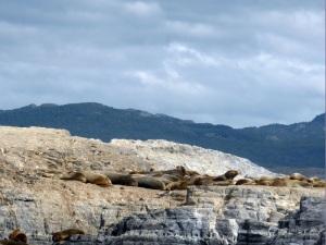 1162. Ushuaia. Navegación por el canal de Beagle. Isla de los Lobos
