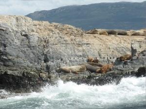1168. Ushuaia. Navegación por el canal de Beagle. Isla de los Lobos