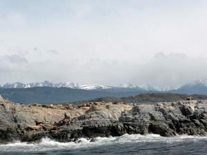 1180. Ushuaia. Navegación por el canal de Beagle. Isla de los Lobos